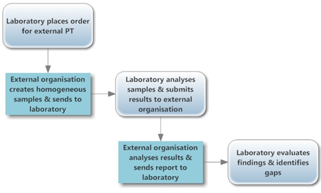 Example of a PT process